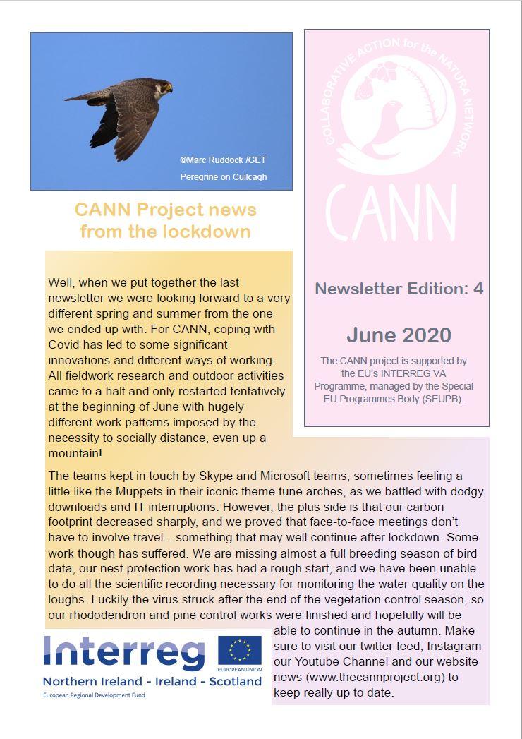 CANN Newsletter #4 Summer 2020