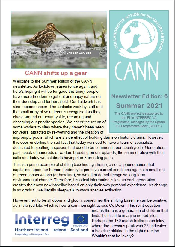 CANN newsletter #6 summer 2021